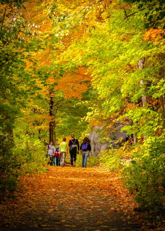 The hiking tracks around Cold Spring are the best place to see foliage during fall in New York City.